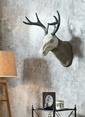 Warm Design Geyik Kafası Duvar Dekoru Gri